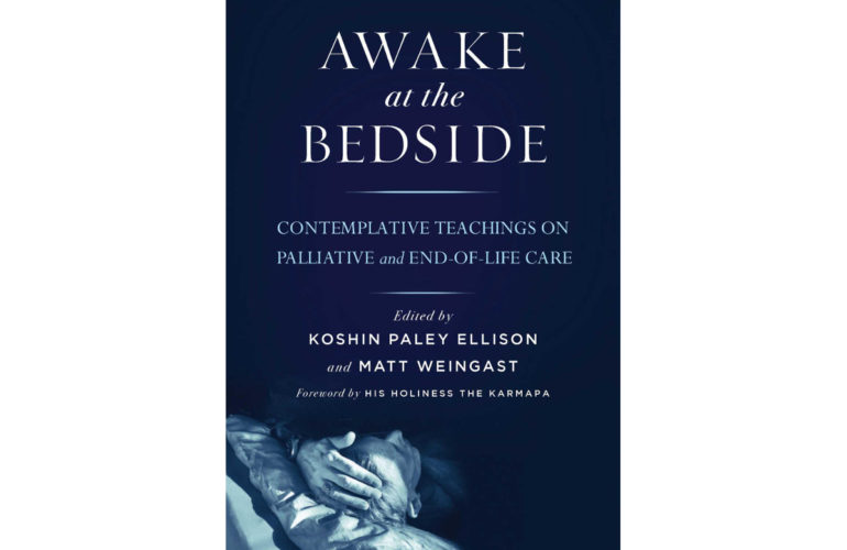 Awake at the bedside – a conversation with Koshin Paley-Ellison