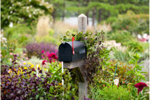 Traditional mail box in a bed of dense flowers with its red flag raised