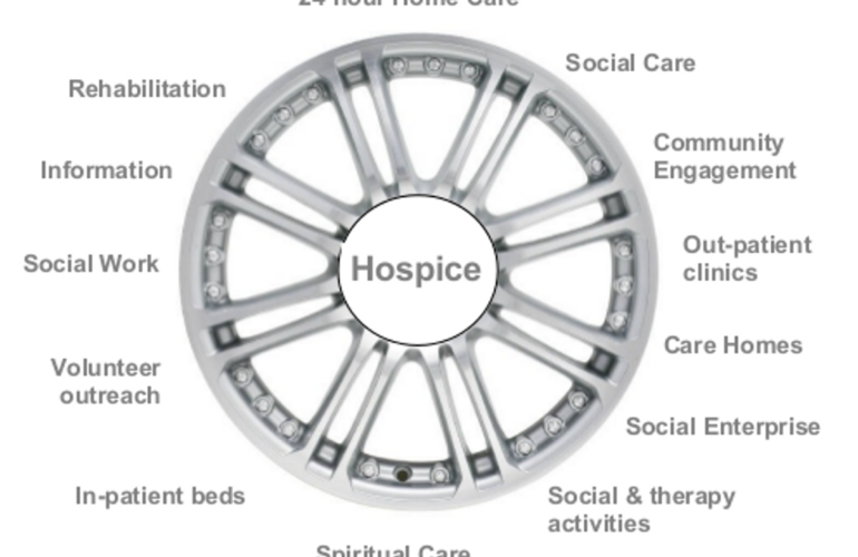 Hospice as a 'hub': a model for the future