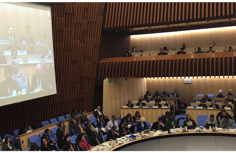 Palliative care advocacy at WHO Executive Board meeting