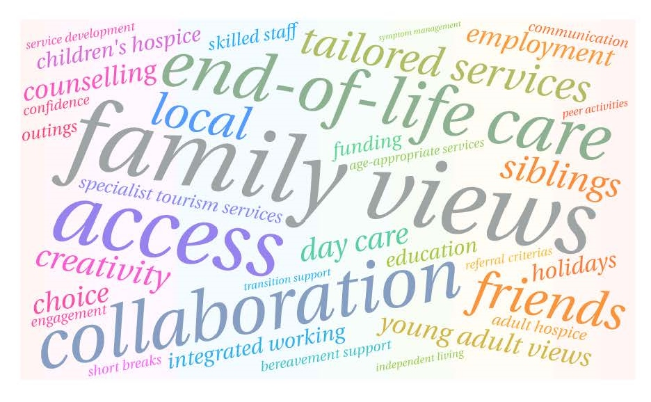 Highlights from a UK Survey of Children and Adult Hospice Provision for Young Adults with Life-Limiting Conditions