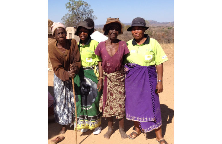 Involvement of community based caregivers in hospice and palliative care in Zimbabwe