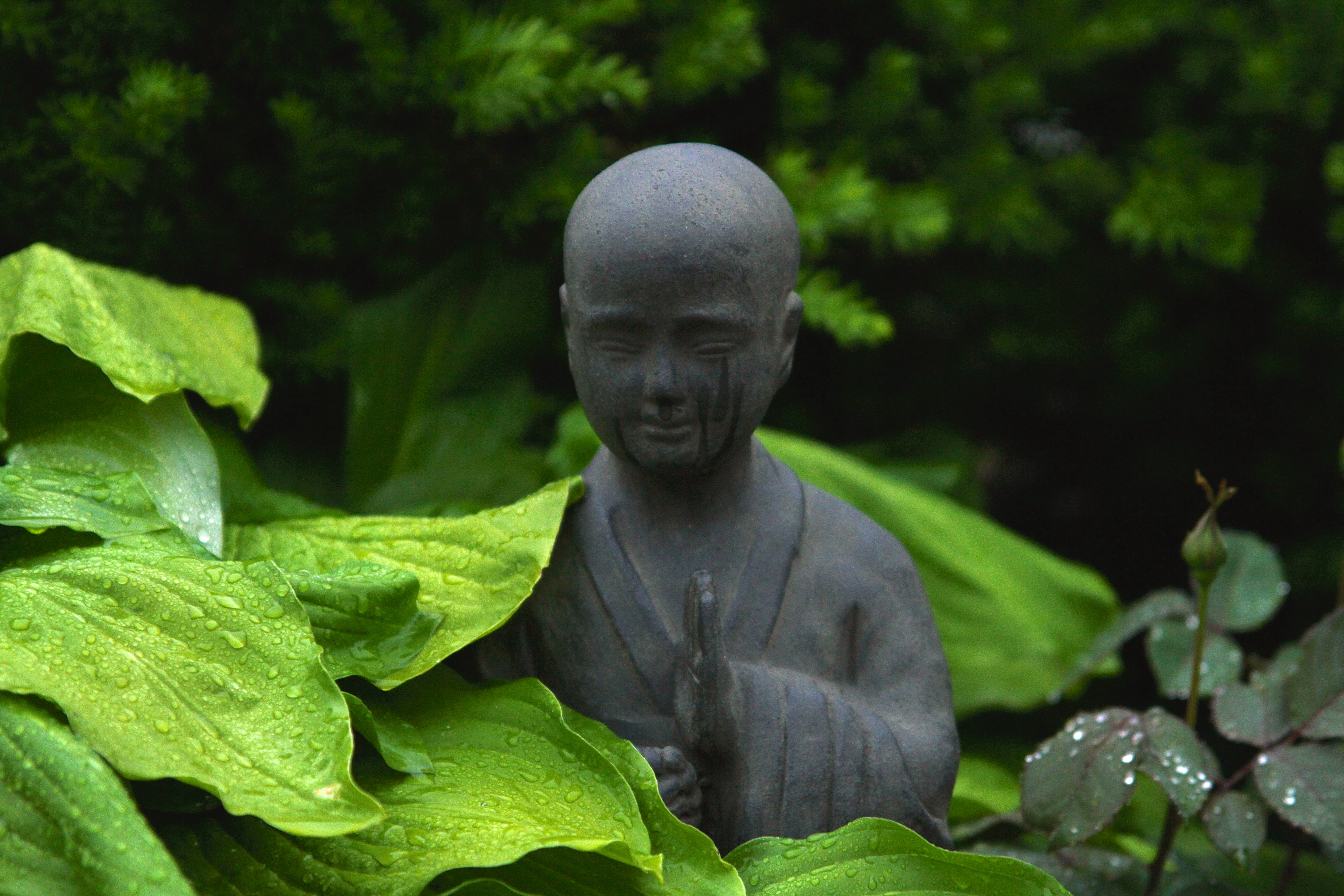 The Importance Of Spirituality In Palliative Care