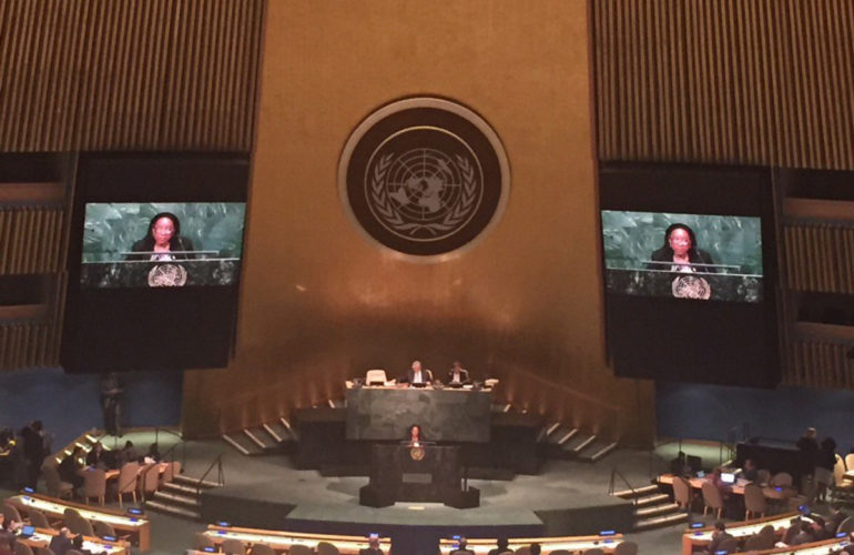 Access to medications at the United Nations General Assembly Special Session on the World Drug Problem
