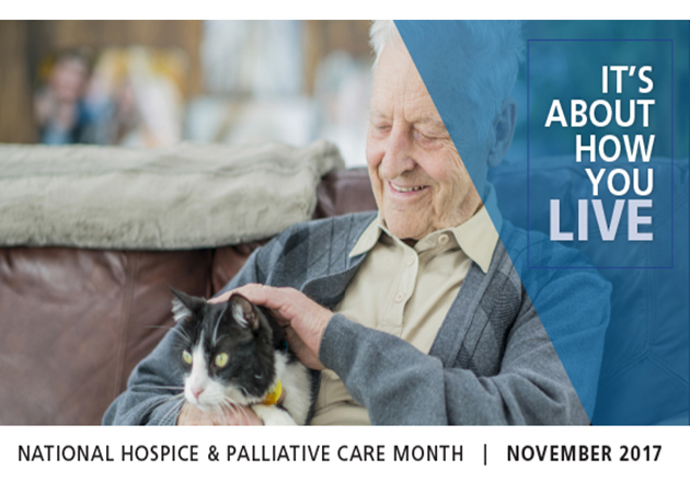 November in National Hospice and Palliative Care Month in U.S.