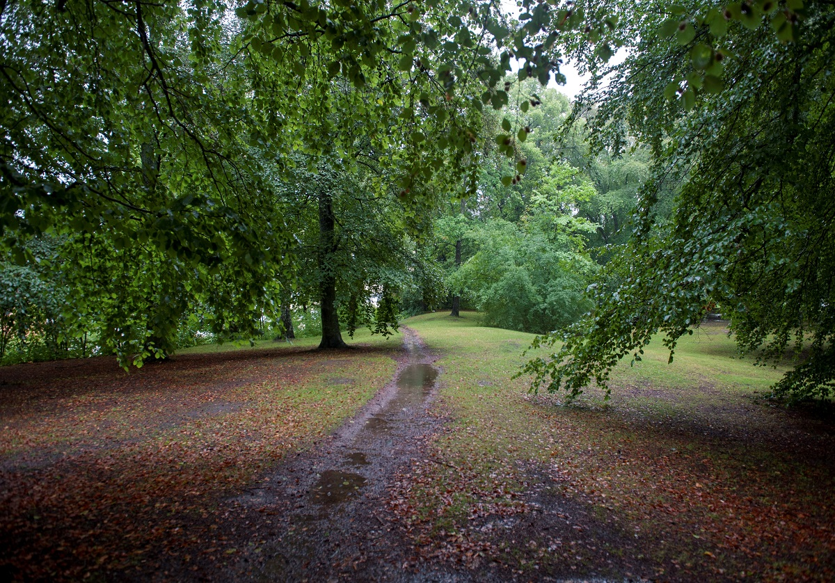 The health-promoting benefits of nature at end of life