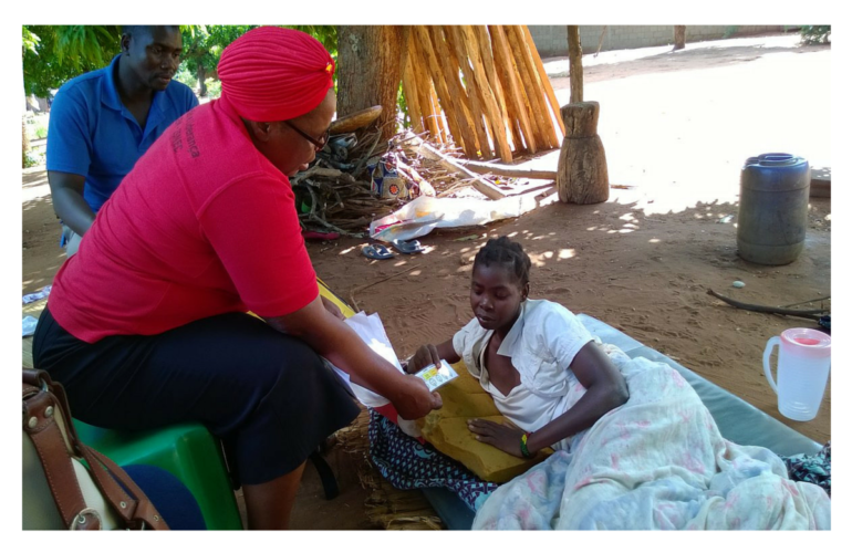 Lessons learned from Mozambique's model of community volunteers