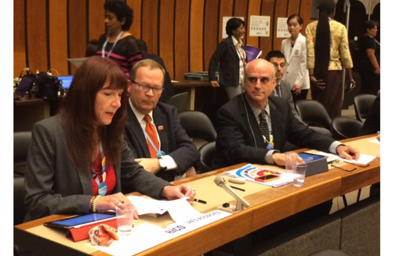 Groundbreaking palliative care resolution adopted at WHA