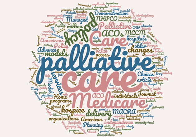 Palliative care and changing policy landscape