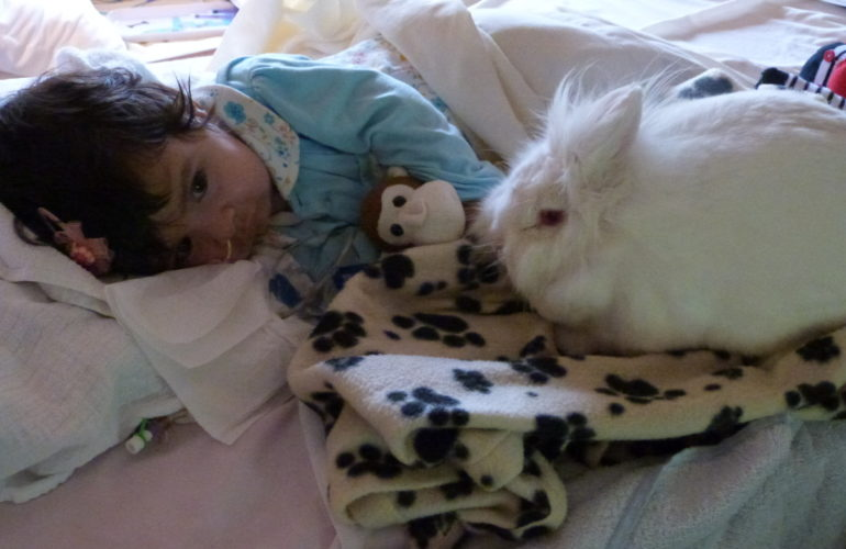 Sharing knowledge: UK children's hospice is filmed for Japanese TV