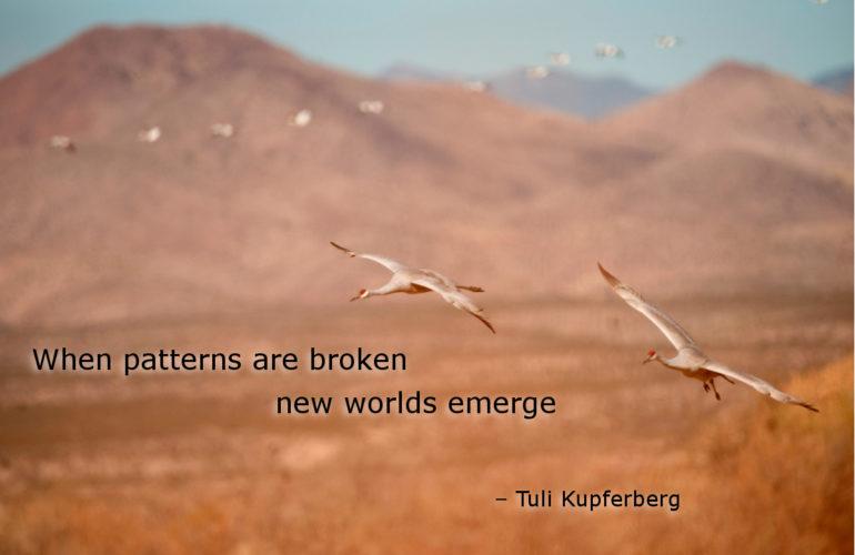 Be inspired 7 December 2012