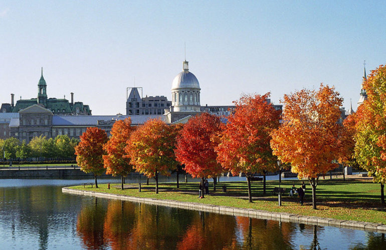 Montreal update: International Primary Palliative Care Research Group meeting