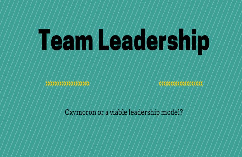 Team leadership in palliative care