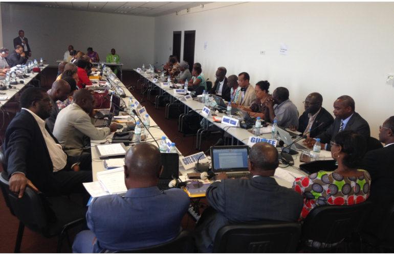 Le développement des soins palliatifs dans les Etats Membres francophones de la région africaine de l'OMS