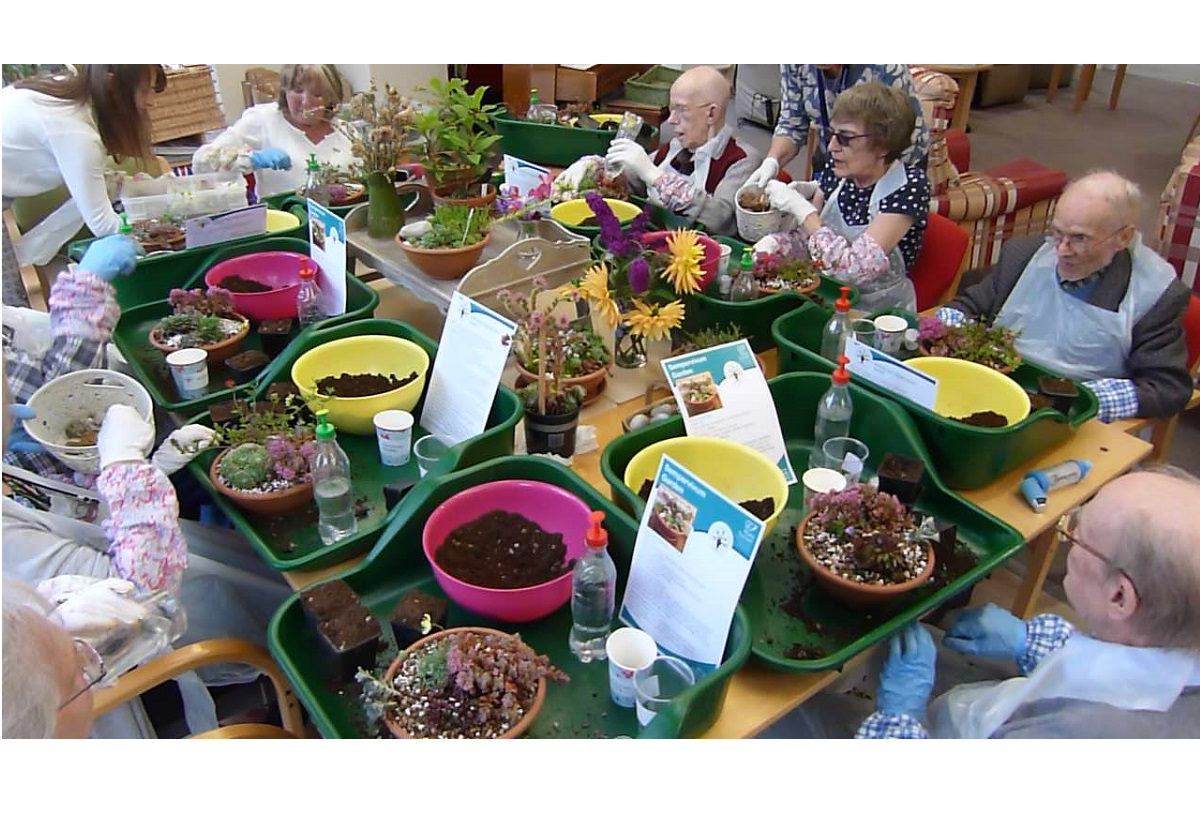 Living through Nature: how one hospice is bringing the benefits of gardening inside