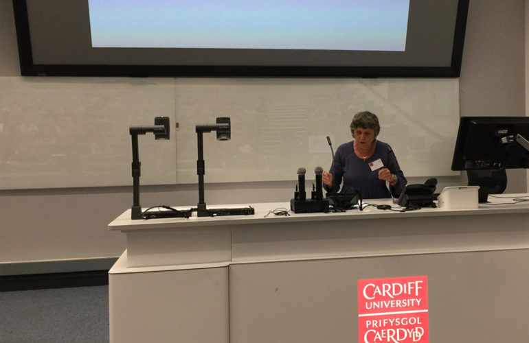 Focus on culture and context at this year's Cardiff Conference