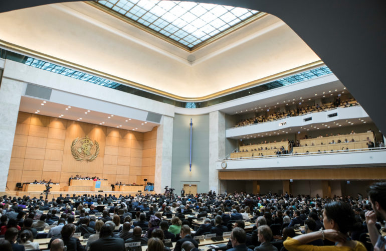 Palliative care delegation at World Health Assembly calls for improved quality of life and an end to preventable suffering