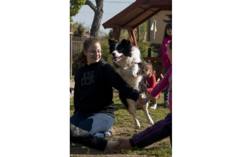 Dogs relieve stress in children suffering from cancer