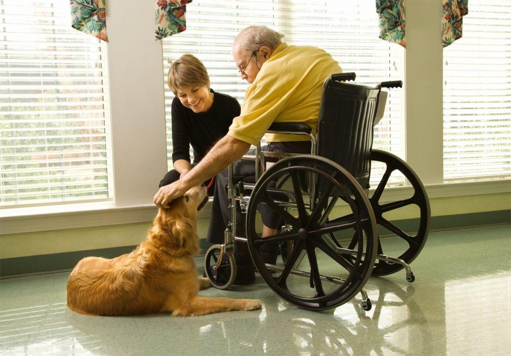Un institut voué aux soins palliatifs créé à Montréal