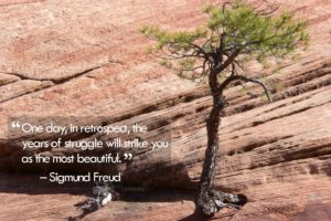 quote_13_december_2012_freud
