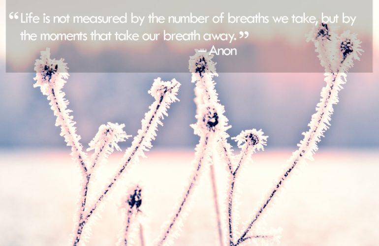 Be inspired 24 December 2012