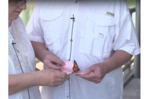 A Butterfly Release hosted by hospice.