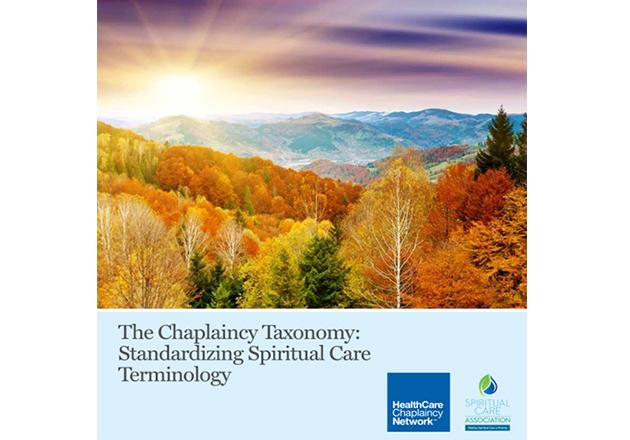 Standardizing Spiritual Care Terminology