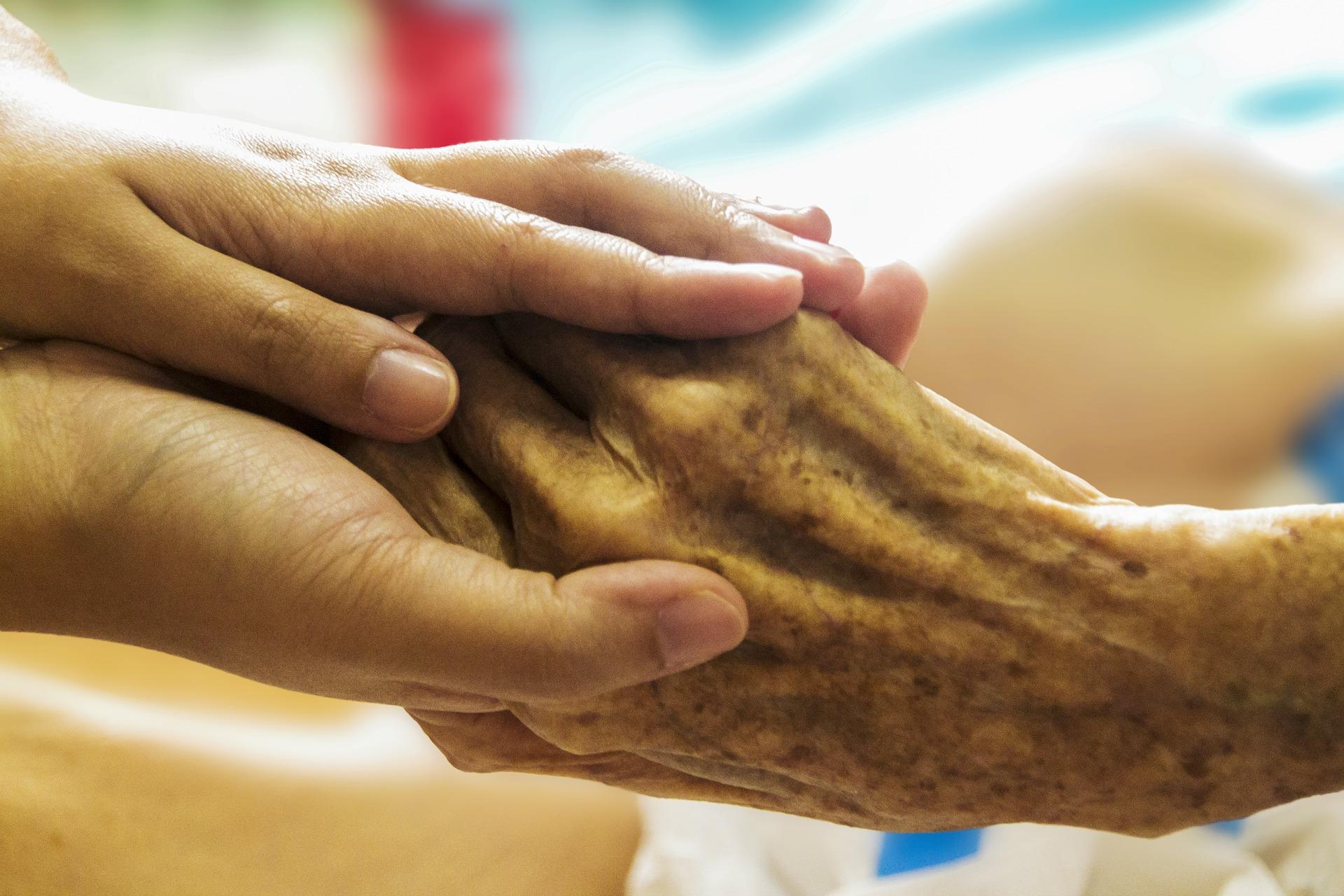 Stellenbosch Hospice: My Daycare Experience