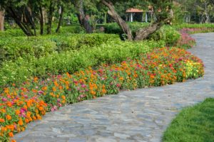 Colorful flower bed garden with stone pathway