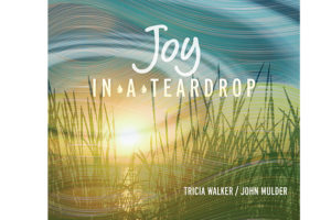 Joy in a Teardrop