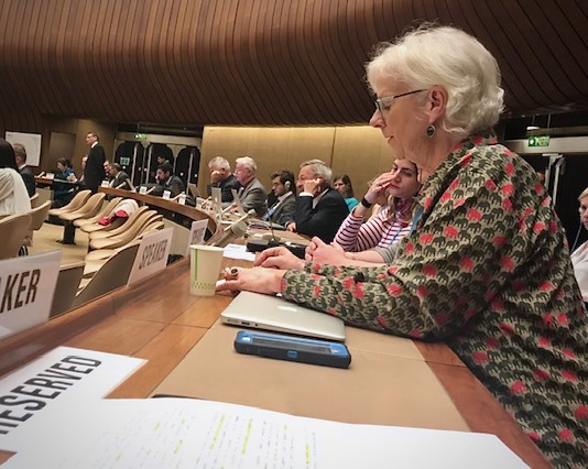What the 72nd World Health Assembly means for access to essential palliative care medicines
