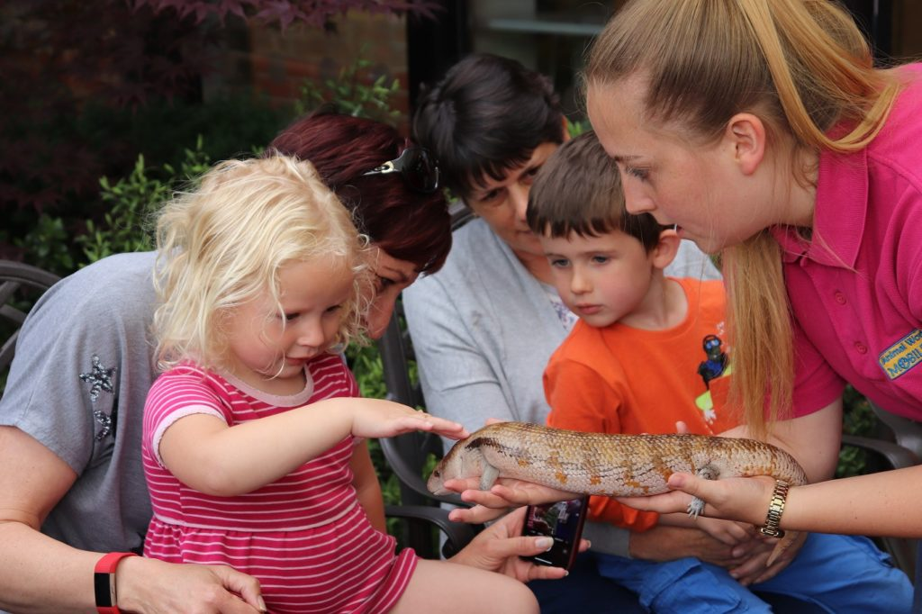 Mobile zoo brings smiles to bereaved families at St Clare Hospice