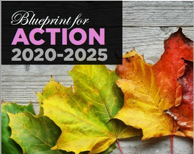 The Quality End-of-Life Care Coalition of Canada (QELCCC) Releases The Blueprint for Action 2020-2025