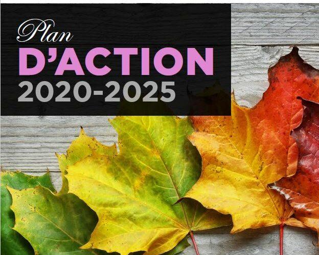 L'association canadienne de soins palliatifs est heureuse d'annoncer que la Coalition pour des soins de fin de vie de qualité du Canada vient de déposer le plan d'action 2020-2025