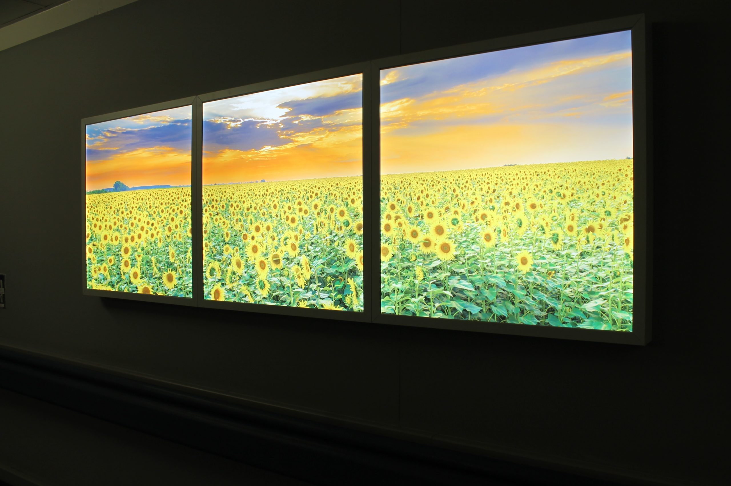 Light boxes provide comfort to bereaved families in hospital