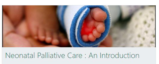 Children's Palliative Care (CPC) Education through Collaboration