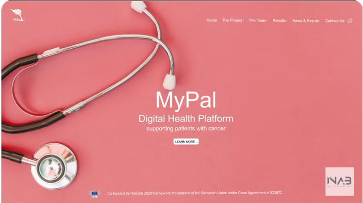 Pointers to promoting a palliative care project using MyPal as anexample